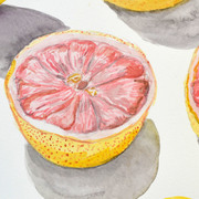 Grapefruitpillow