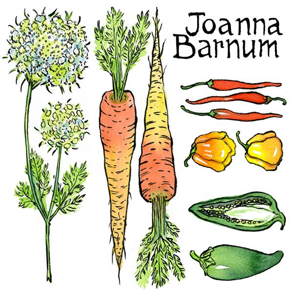 Joannabarnum tdacad