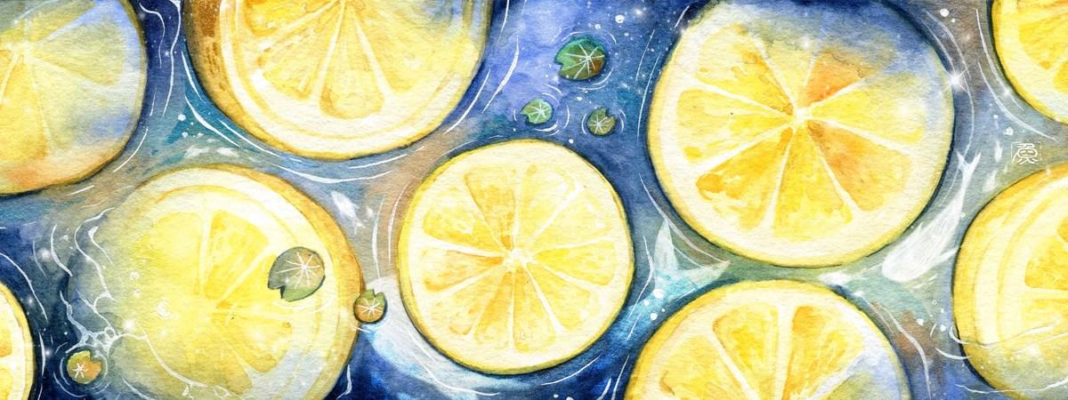 Lemonlake tdac