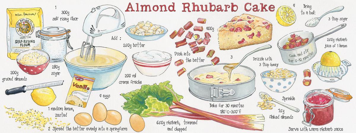 Almond rhubarb cake suzanne de nies