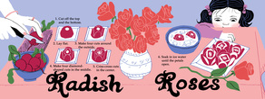 Radishroses