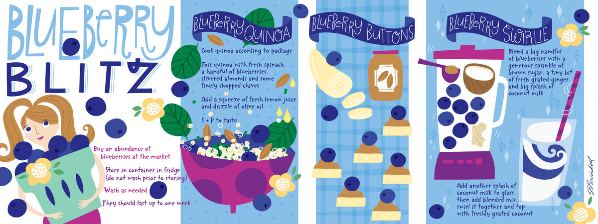 Blueberry blitz 01