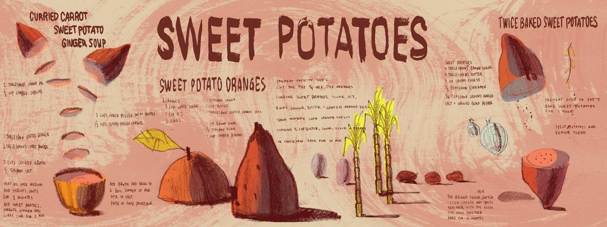 Sweet potato final