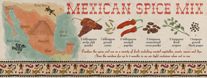 Mexicanspicemixbybetsybeier tdac