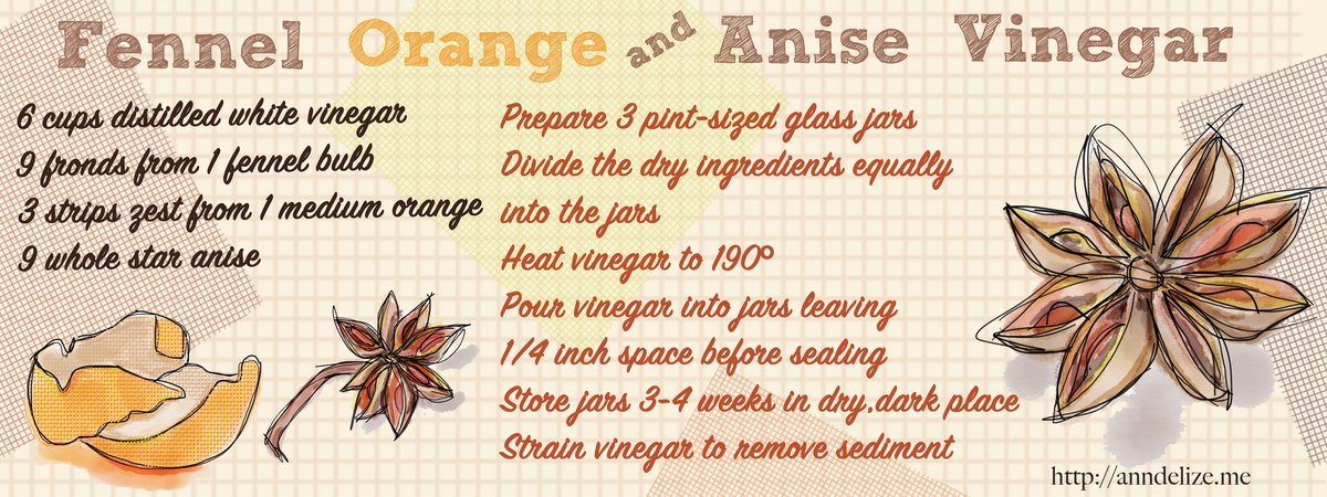 Fennel orange anise vinegar