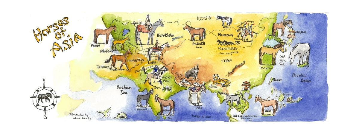 Horses of asia
