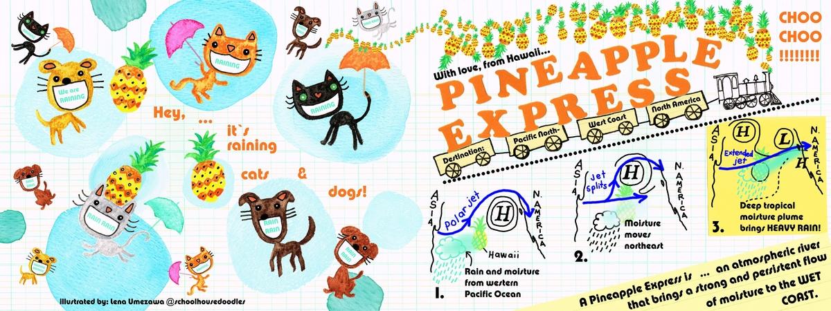 Pineappleexpressmap.jpg