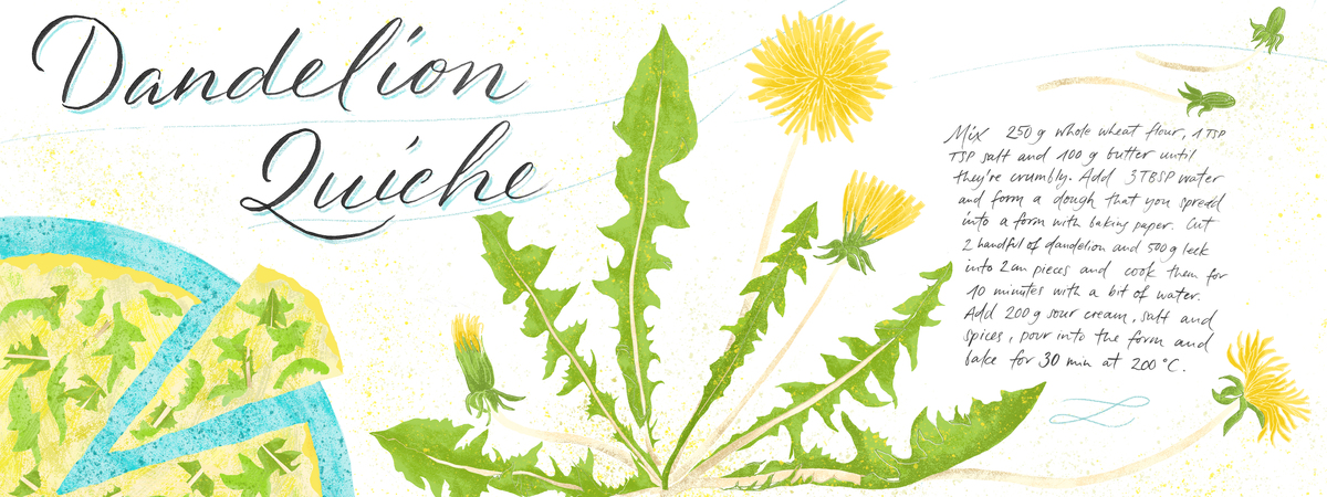 Dandelion quiche