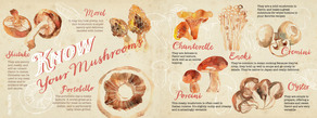 Know your mushrooms layout 01