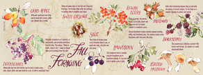 Fall forage layout 01