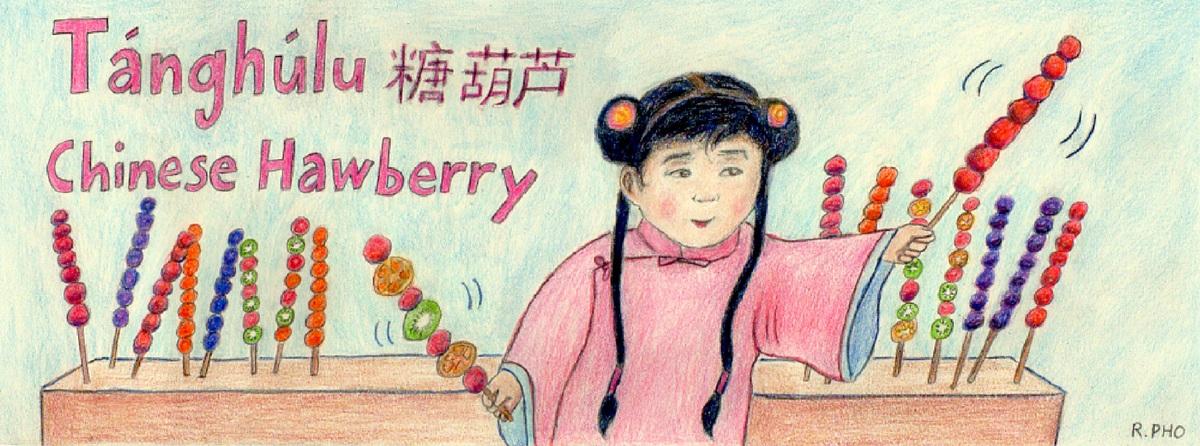 Tanghulu   chinese hawberry