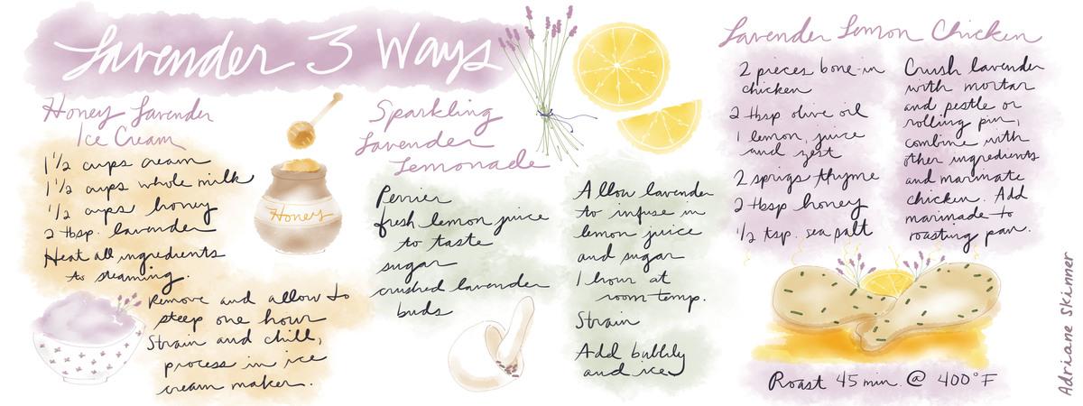 Lavender three ways tdac