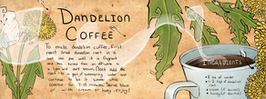Dandelion coffee sarah bentley