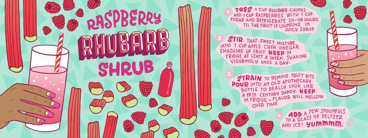 Rhubarb shrub copy