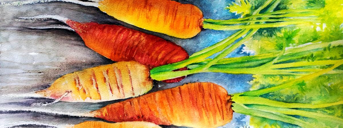 Carrots feast