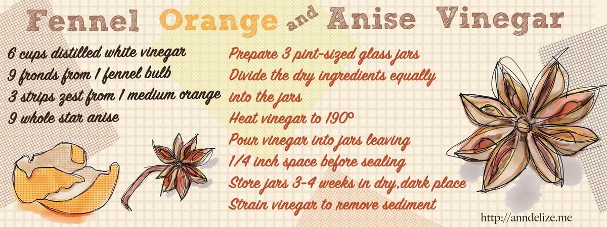 Fennel orange anise vinegar