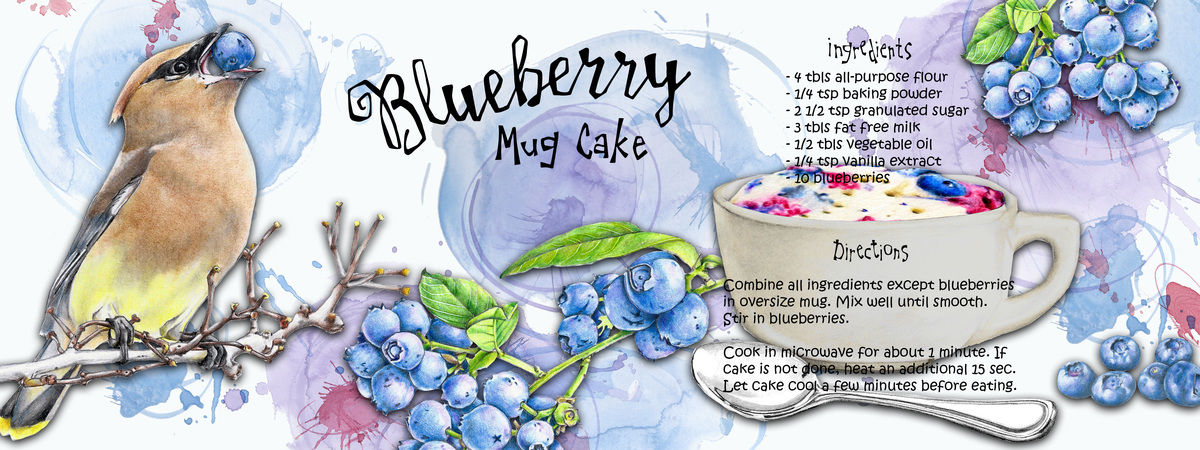 Bluberry recipe big