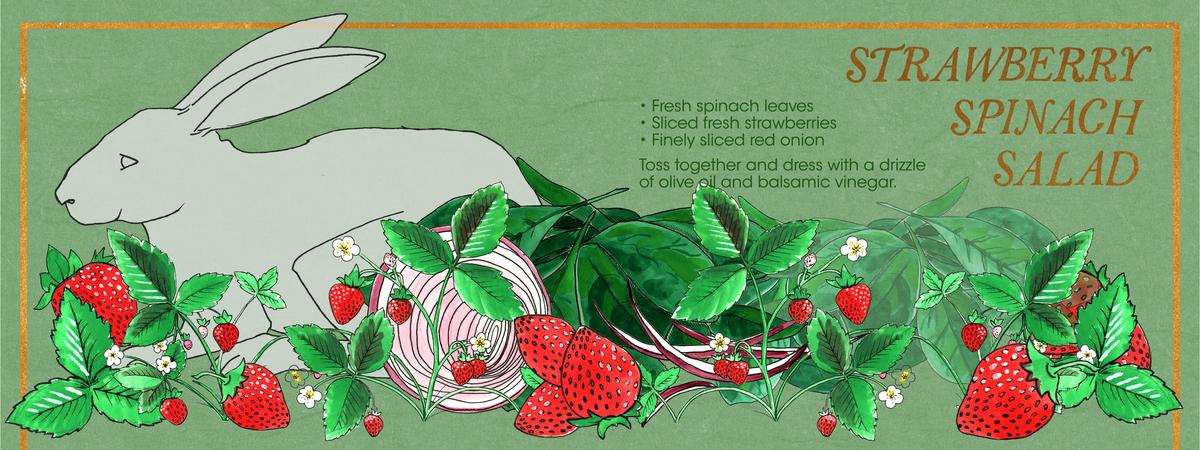 Spinachsaladv2