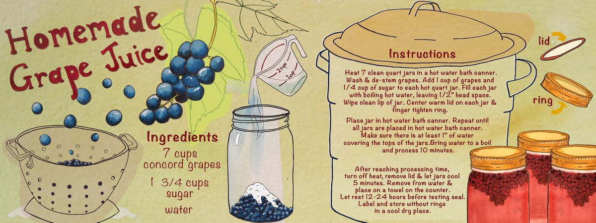 Homemade grape juice rebecca gerendasy tdac