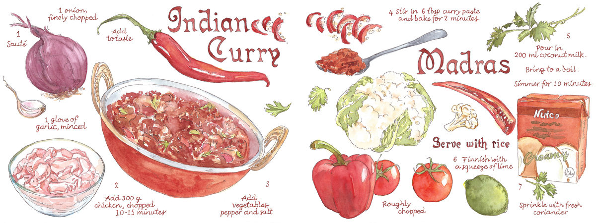 Indian curry suzanne de nies
