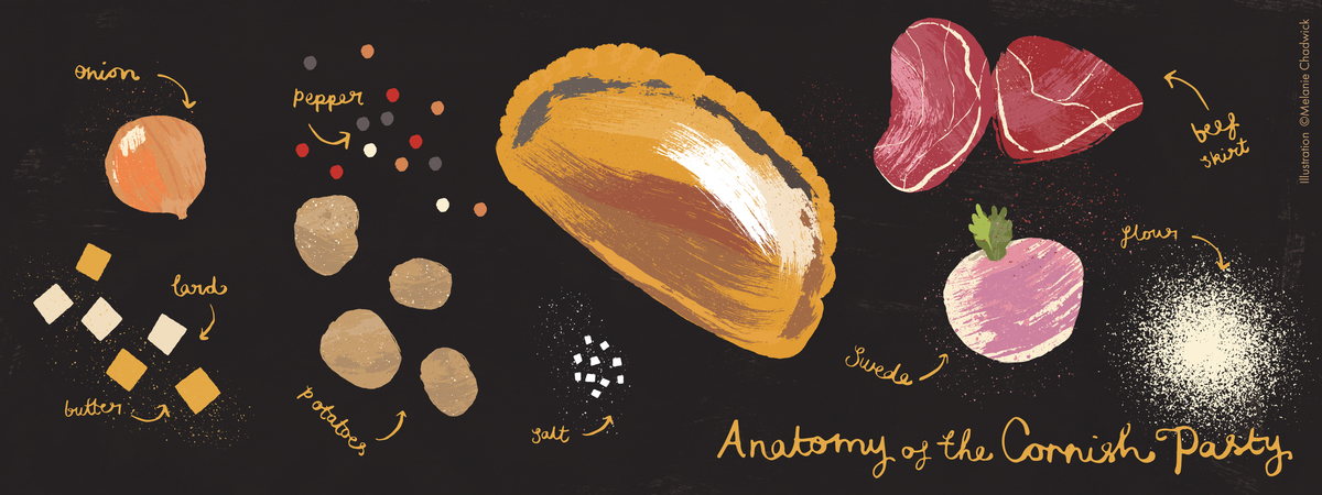 Pasty anatomy tdac
