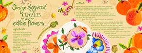 Orange poppyseed cupcake recipe emmajayne designs