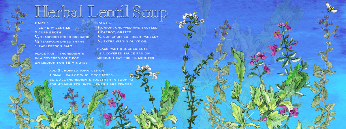 Herbal lentil soup final