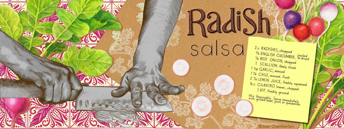 Radish salsa recipe