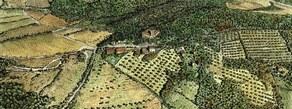 Trebbio  aerial view