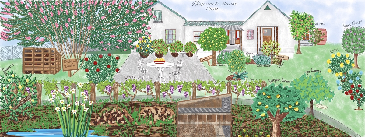 Our Vintage Home And Garden By Sonja Taljaard They Draw Travel