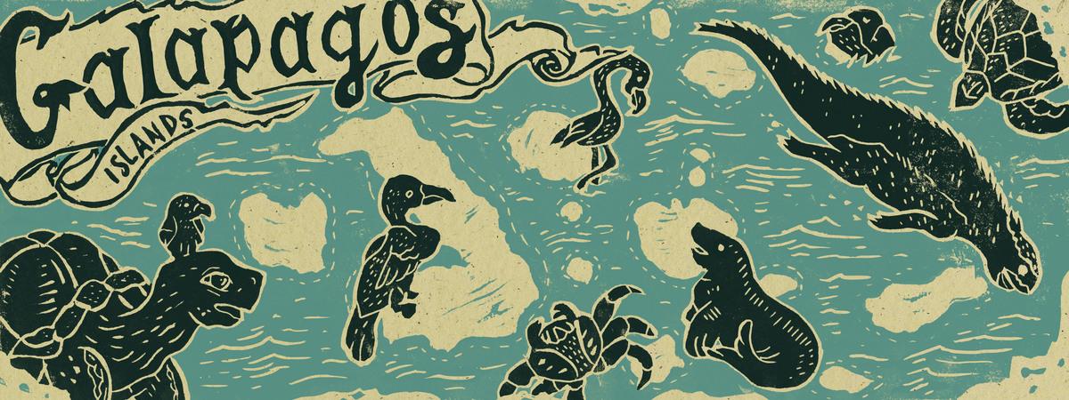 Galapagos map tomjohnson.jpg