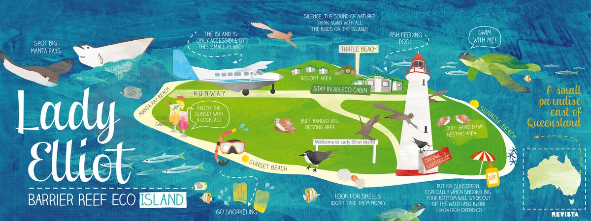 Lady Elliott Island Day Trip