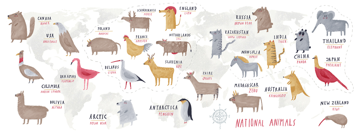 Home they draw travel national animals from around the world by oi oilikki gumiabroncs Images